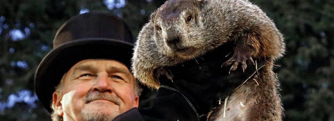 El Día de la Marmota - Groundhog Day. Una tradición con más de 133 años de historia.